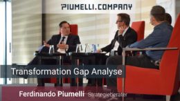 Ferdinando Piumelli - Transformation Gap Analyse
